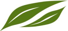 blaetter-gruen-klein